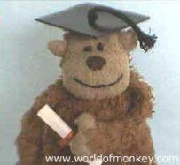 Monkey diploma (Worldofmonkey.com)
